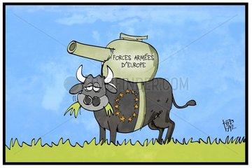 Forces armées d'Europe