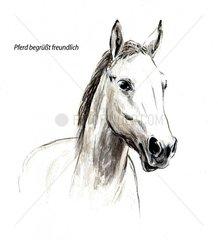 Serie Pferdeverhalten begruesst freundlich