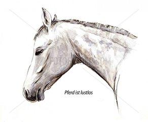 Serie Pferdeverhalten lustlos