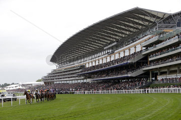Royal Ascot  Horses and jockeys during the Ascot Gold Cup in front of the grandstand