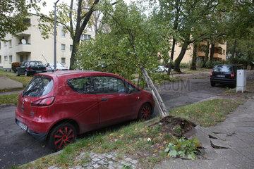 Berlin  Deutschland  entwurzelter Baum liegt auf der Kuehlerhaube eines Autos