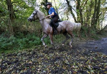 Zernikow  Frau reitet auf ihrem Pferd im Galopp aus einem See heraus