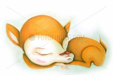 Schlafendes Reh