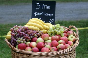 Hannover  Korb mit frischem Obst