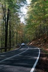Autoverkehr im Thueringer Wald