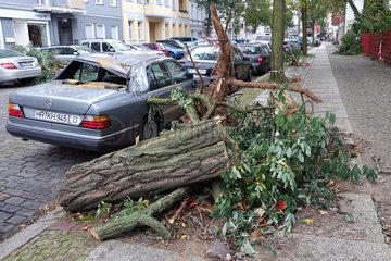 Berlin  Deutschland  Sturmschaden - abgeknickter Baum hat ein Auto beschaedigt