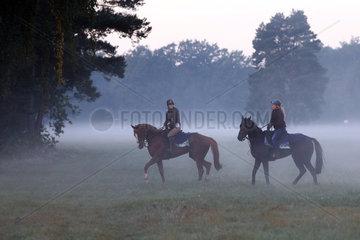 Hoppegarten  Pferde und Reiterinnen am Morgen bei einem Ausritt im Nebel