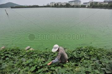 China  Wuhan  Umweltverschmutzung