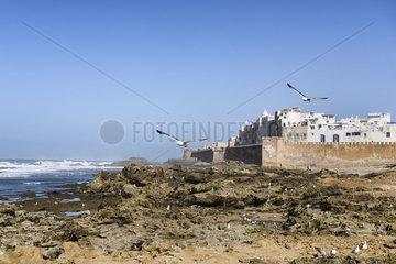 Essaouira Medina mit Stadtmauer