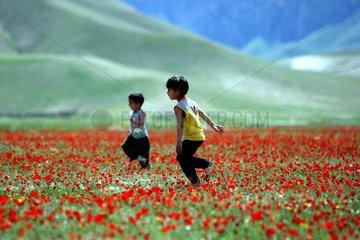 Afghanistan  Fruehllng