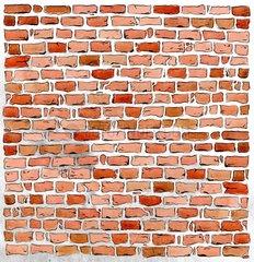Wand Ziegelwand 1