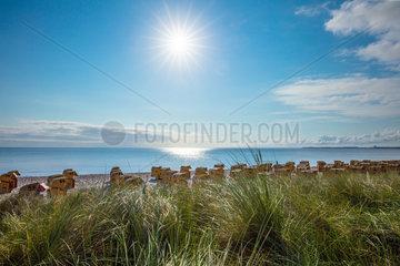 Scharbeutz  Blick von der Duenenmeile auf den Ostseestrand.