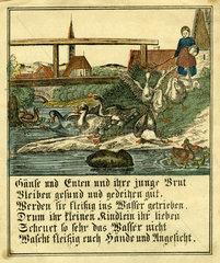 Gaensehueten  1852