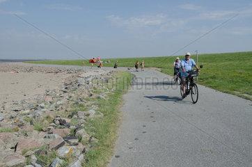 Reussenkoege  Deutschland  Spaziergaenger und Radfahrer am Beltringharder Koog