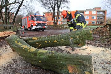 Flensburg  Deutschland  Feuerwehrmann raeumt nach dem Orkan Xaver auf