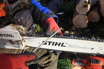 Kropp  Deutschland  ein Forstwirt schaerft Ketten seiner Motorsaege