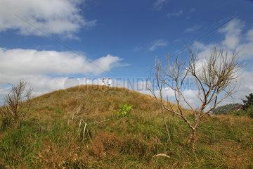 Steenodde  Deutschland  bronzezeitlicher Grabhuegel Esenhugh bei Steenodde