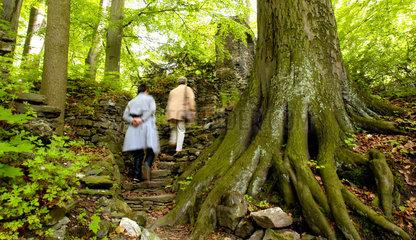 Nossen  Deutschland  der Zellwald am Kloster Altzella