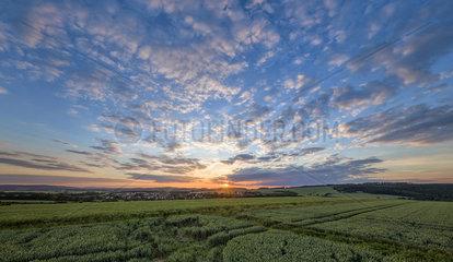 Sonnenuntergang ueber Weizenfeld bei Steinheim/ Ostwestfalen