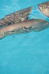 Woman floating in pool  mid section  high angle view