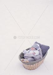 Baby sleeping in bassinet in snow
