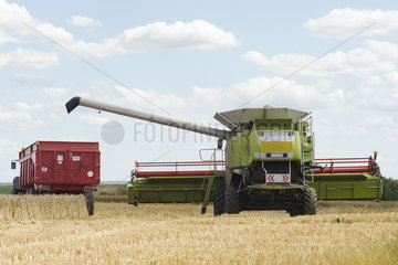 Combine harvesting wheat on farm