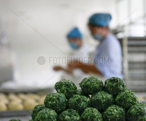 #CHINA-HEBEI-FOOD PROCESSING (CN)