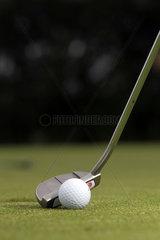 Sankt Peter-Ording  Deutschland  ein Golfball liegt auf dem Rasen eines Golfplatzes