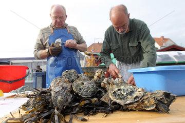 Flensburg  Deutschland  Fischer verkaufen frische Austern