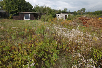 Neumuenster  Deutschland  Kleingartenkolonien kaempfen zusehends mit Leerstaenden