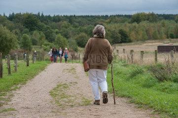 Albersdorf  Deutschland  Frau unterwegs im AOeZA