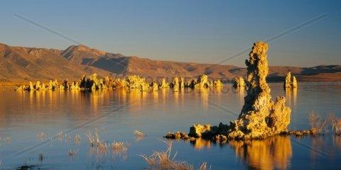 Mono Lake  Tuff in der Abendsonne