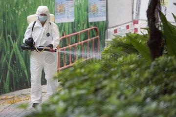 Hong Kong  China  Mann versprueht Pestizide auf einen Strauch
