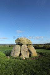 Holtsee  Deutschland  Megalithanlage (Huenengrab) auf einem Feld bei Holtsee