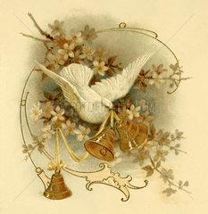 Weisse Taube mit Glocken  Illustration  Friedenssymbol  1902