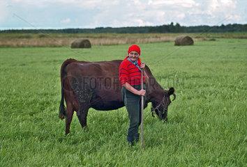 Eine Baeuerin mit ihrer Kuh auf der Weide  Estland
