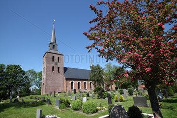 Oldenswort  Deutschland  die aus Backstein erbaute Oldensworter Kirche St. Pankratius