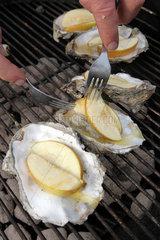 Harrislee  Deutschland  gegrillte Austern mit Apfelstuecken