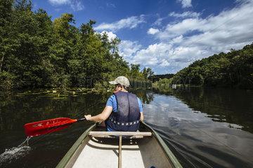 Idyllische Uferlandschaft am Mirower See