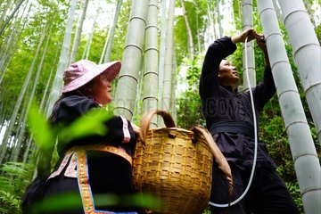#CHINA-GUANGXI-BAMBOO WINE INDUSTRY (CN)