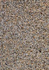 Sandprobe aus Lahami Bay  Aegypten