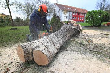 Flensburg  Deutschland  Aufraeumarbeiten nach Sturmtief Christian