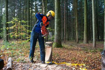 Hartenholm  Deutschland  Waldarbeit
