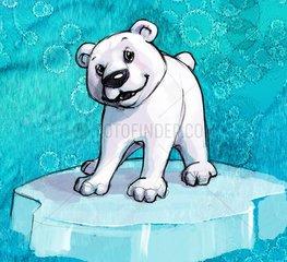 Eisbaerchen auf Eisscholle