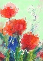 Mohnblumen und Kornblumen