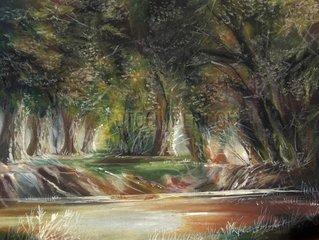 Waldlichtung mit kleinem Teich