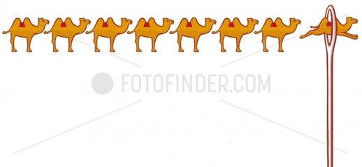 Kamele Nadeloehr