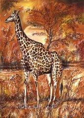 Giraffe im Buschland mit Sonne