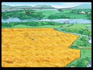 Getreidefeld und weite Landschaft