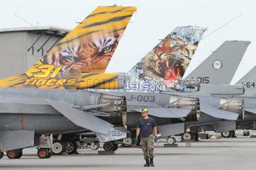 Jagel  Deutschland  Nato Tiger Meet auf dem Fliegerhorst Jagel